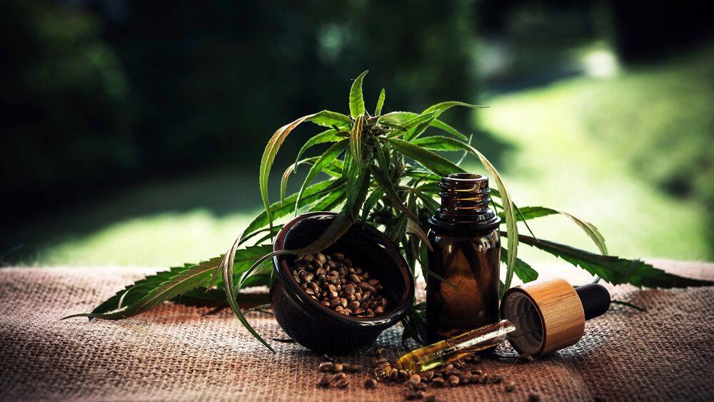 Cannabis terapeutica: usi e benefici