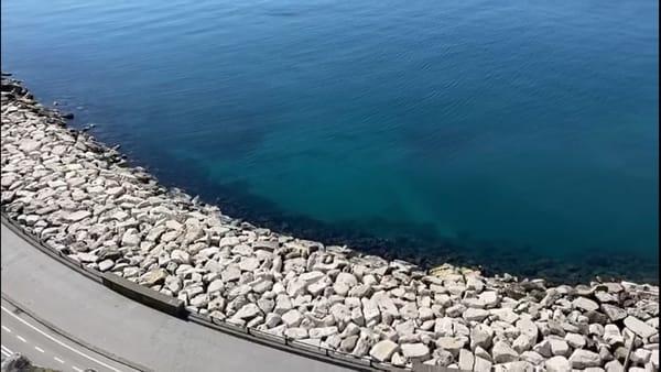 Il mare di Napoli diventa caraibico con il lockdown (VIDEO)