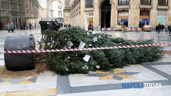 "Baby gang ""scalano"" l'albero in galleria Umberto"