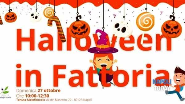 Halloween in Fattoria alla Tenuta Melofioccolo