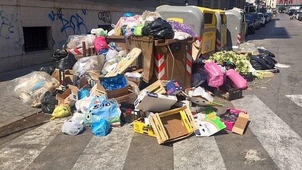 Vomero: degrado e abbandono. Torna l'incubo spazzatura. Intervista sull'infestazione dei platani