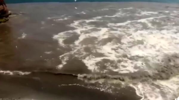 """I Verdi: """"Macchia marrone nel mare di Posillipo"""""""