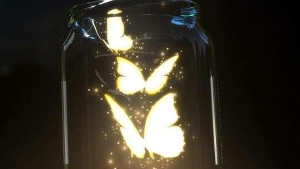 """All'Orto Botanico torna """"L'Universo delle farfalle"""""""
