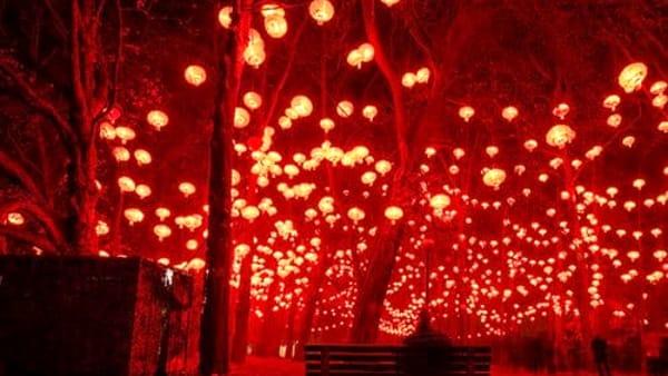 Notte delle Lanterne dei desideri: Magie d'Estate all'Averno